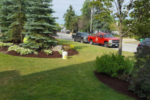 commercial-residential-landscaping