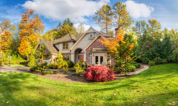 curb appeal fall landscaping