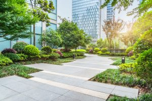 Commercial and Condo Maintenance Services